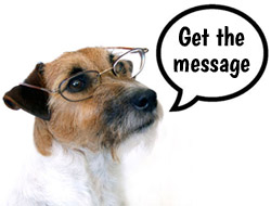 Get The Message Across With Dog Message Clothing
