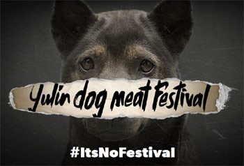 Stop The Yulin Dog Meat Festival China Pet Trade