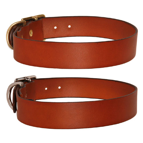 planet pet shop with Tan Leather Dog Collar Lead on Waddle Dee 286302636 in addition LPS Omalovanky besides Catmate Kattenluik Select Chip Disc 355 also Product additionally Quick Muzzle Standard Dog.